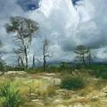 Approaching Summer Storm by Richard Nickson