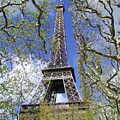 April In Paris by Tom Reynen