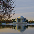 April Morning In Washington Dc by Bill Cannon
