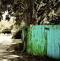 Aqua Fence by Jill Tennison