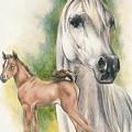 Arabian by Barbara Keith