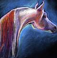 Arabian Horse Equine Painting by Svetlana Novikova