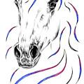 Arabian Horse Style by Kelli Swan