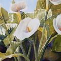 Aram Lillies by Susan Heine
