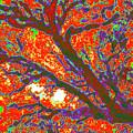 Arboreal Plateau 44 by Gary Bartoloni