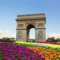 Arc De Triomphe In Paris by Anastasy Yarmolovich