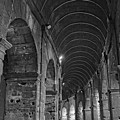 Arcades Of Coliseum  by Nick Difi