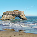 Arch In The Sea With Pelicans Flying By, At Natural Bridges State Beach, Santa Cruz, California by Mihaela Nica