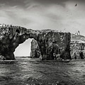 Arch Rock And Lighthouse In Black And White by Endre Balogh