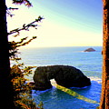 Arch Rock Reflection by Michele Hancock