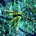 Archaic Blue Dream by Silva Wischeropp