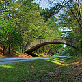 Arched Bridge Overpass  by Larry Braun