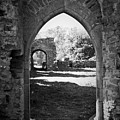 Arched Door At Ballybeg Priory In Buttevant Ireland by Teresa Mucha