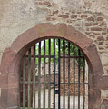Arched Gate At Heidelberg Castle by Teresa Mucha