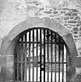 Arched Gate B W by Teresa Mucha