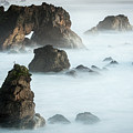 Arched Rock Sea Bird by Travis Elder