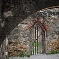 Arched Way by Buck Buchanan