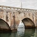 Arches Of East Coast Railway In Florida Keys by Elena Elisseeva