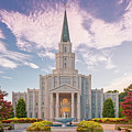 Architectural Photograph Of Houston Latter Day Saints Temple In Champions Forest - Lds Church Texas by Silvio Ligutti