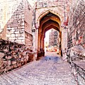 Archways Ornate Palace Mehrangarh Fort India Rajasthan 1a by Sue Jacobi