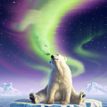 Arctic Kiss by Jerry LoFaro