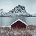 Arctic Landscape In Northern Norway, Senja by Aldona Pivoriene