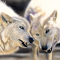 Arctic Pair by Sandi Baker