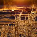Arctic Sea Smoke Sunrise by Dianne Cowen