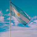 Argentinian Flag In Central Park In Bariloche-argentina  by Ruth Hager