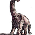 Argentosaurus by Lisa Haney