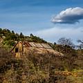 Arizona Barn by Dennis Swena