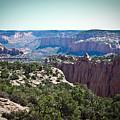 Arizona Desert Landscape by Ryan Kelly