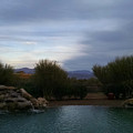 Arizona Evening by Stephanie Forrer-Harbridge