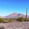 Arizona Landscape by Edward Peterson