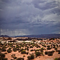 Arizona Rainy Desert Landscape by Ryan Kelly