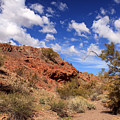 Arizona Red Rock by James Eddy