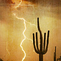 Arizona Saguaro Lightning Strike Poster Print by James BO  Insogna