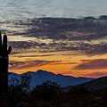 Arizona Sunset by Brigitte Mueller