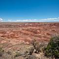 Arizona's Painted Desert by Robert J Caputo