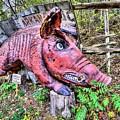 Arkansas Razorbacks by JC Findley