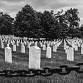 Arlington by Andre Thibault