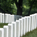 Arlington Cemetery by John Greim