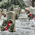 Arlington Christmas by JC Findley