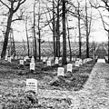 Arlington National Cemetery - C 1867 by International  Images