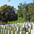 Arlington National Cemetery by Anthony Schafer