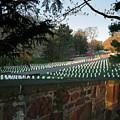 Arlington National Cemetery by Jemmy Archer