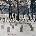 Arlington Winter Snow by D Hackett