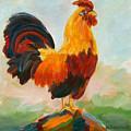 Aroostrocrat by Naomi Gerrard