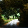 Around The Corner by Douglas Barnard