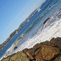 Around The Golden Gate by Donna Blackhall